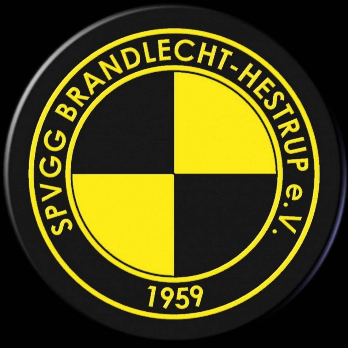 JSG Brandl./Hesepe U15